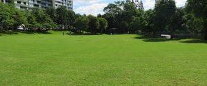 Roma Street Parklands